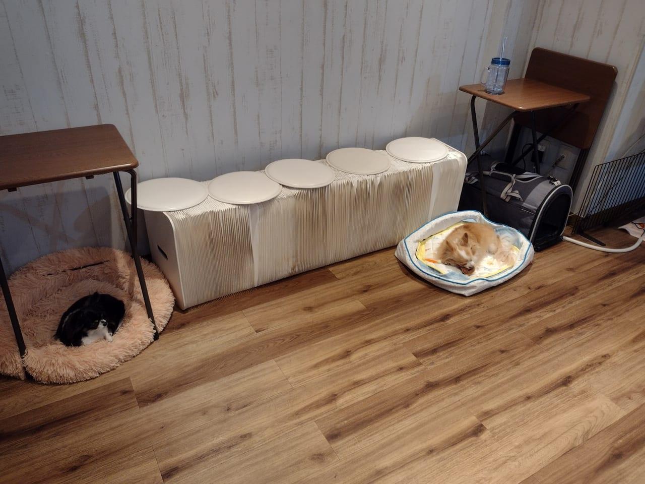 温もりカフェ店内